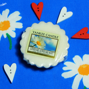 Miłosne dylematy – Loves me, loves me not Yankee Candle