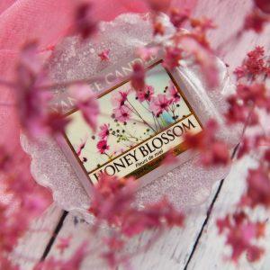Flower Power czyli kwiatowe szaleństwo z woskiem Honey Blossom od Yankee Candle